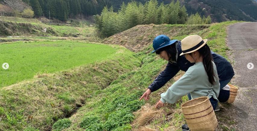 ハナサク春の里山で山野草ウォーキングのアイキャッチ画像